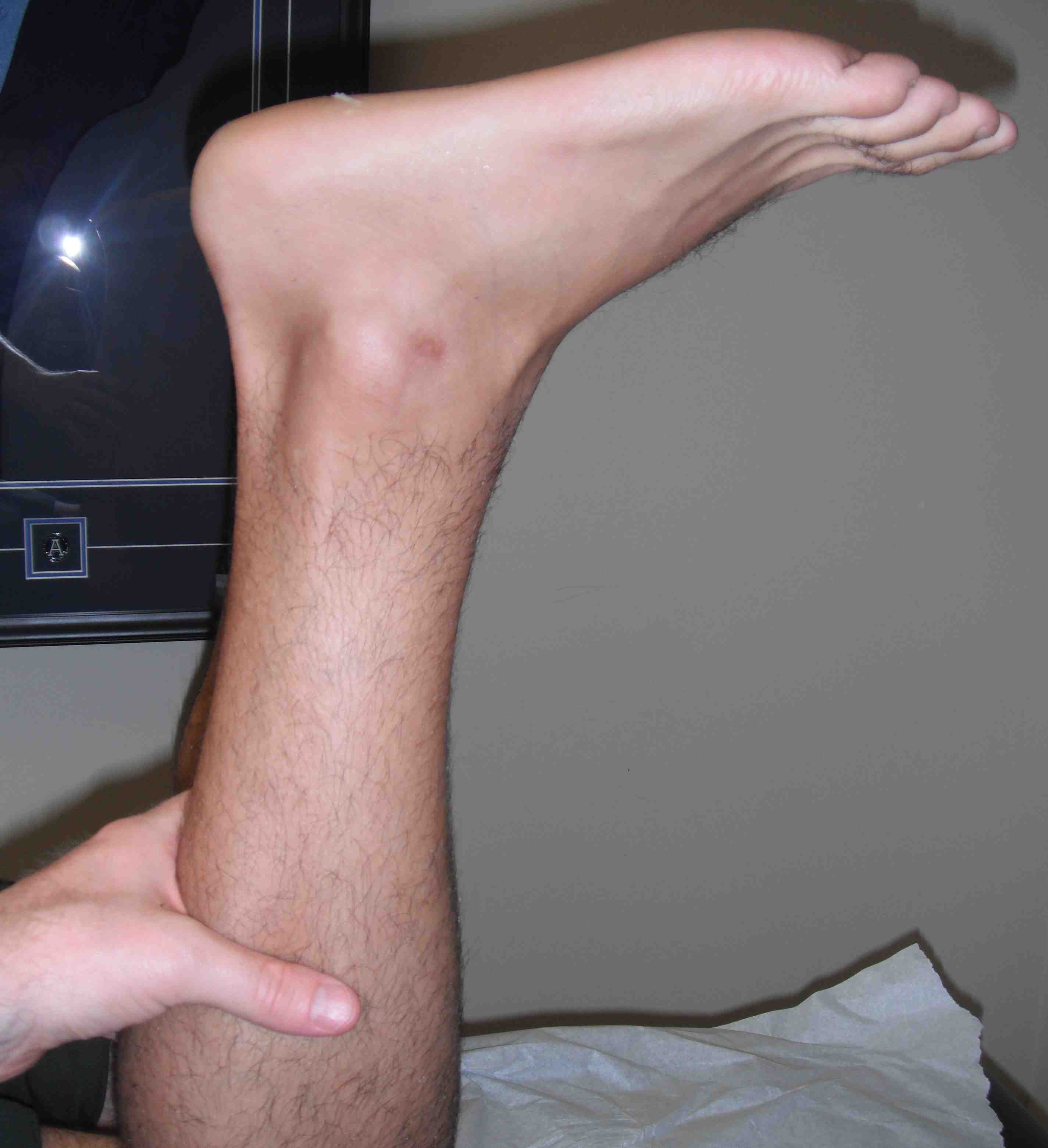 Lower Limb Unipolar Stepper Driver Schematic Bmp Sch Thompson Sign Normal Pre